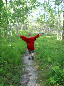 Forest Walk Elijah Path